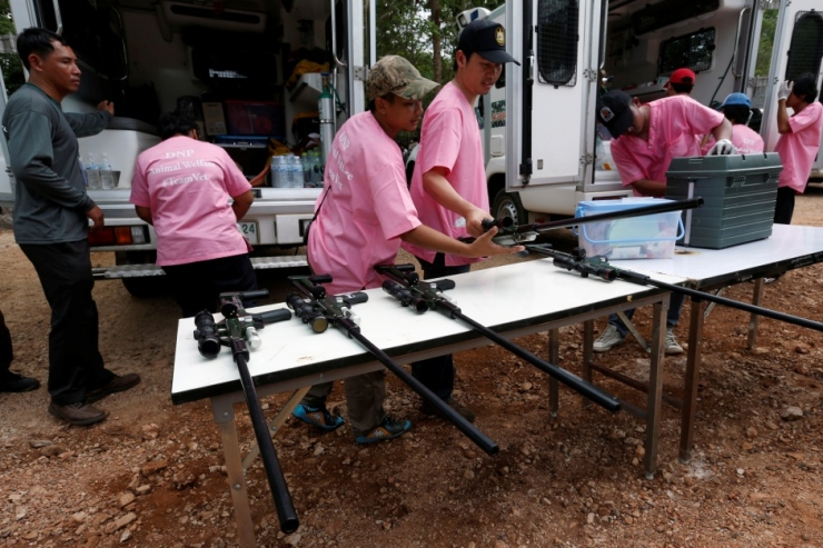 thailand-tiger-temple-tranquilizer-guns-may-30-2016